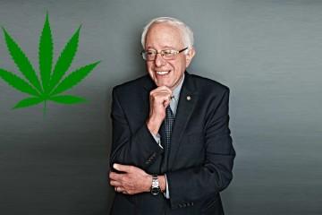 Bernie Sanders Marijuana Prohibition