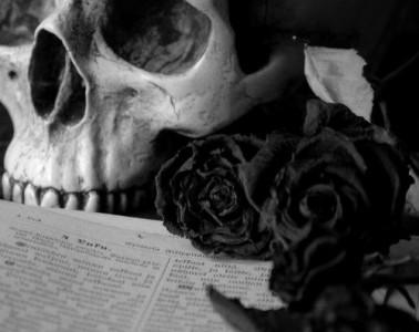 black roses skull
