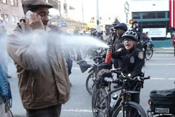 Police Brutality pepper spray